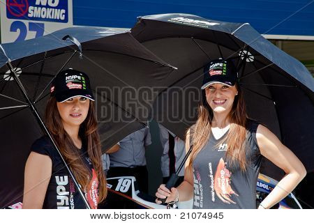 Pitbabes Of A Team Hype Of 125Cc Of The Cev