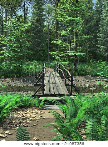 Woodland Path and Bridge