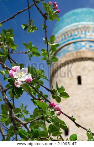 Fruit Tree's Blossoms On The Background Of Chor-minor Minaret In Bukhara