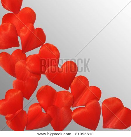 Petals in heart shape over gray background