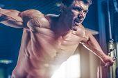 Brutal Caucasian Bodybuilder Training Chest In Gym poster