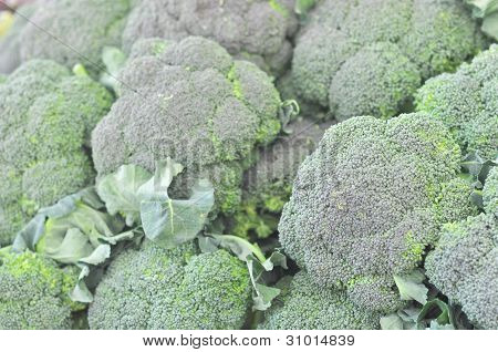 Broccoli vegetables