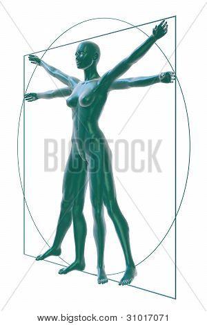 Vitruvian woman on white