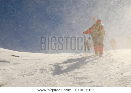 Back country skiers (ski touring)