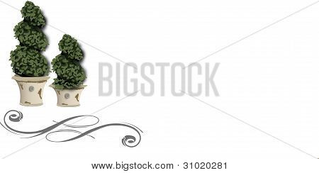 French Topiary