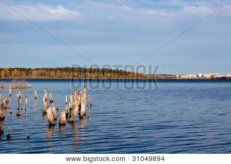 Golden Fall Lake