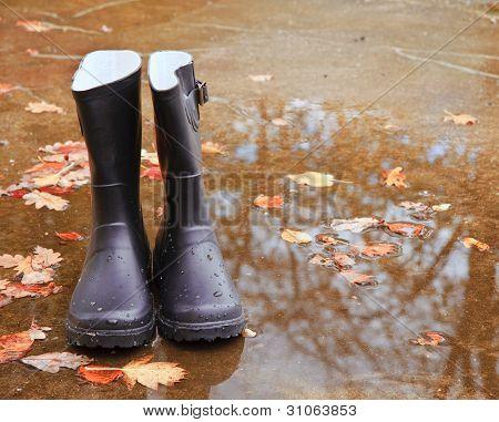Autumn Fall Concept Wellington Boots Leaves And Rain