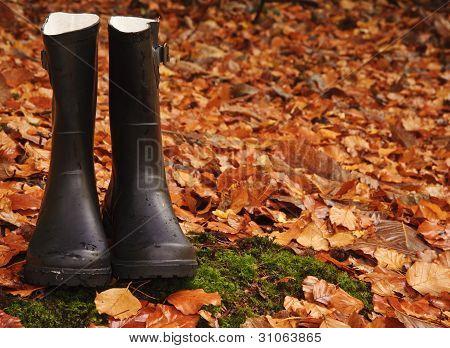 Otoño otoño concepto Wellington botas hojas y lluvia