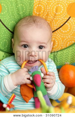 Baby Biting Rattle