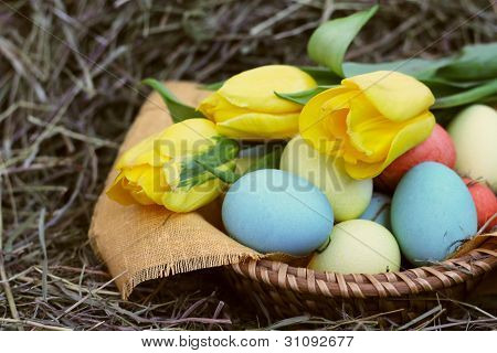 Basket Of Easter Eggs And Tulips On Hay