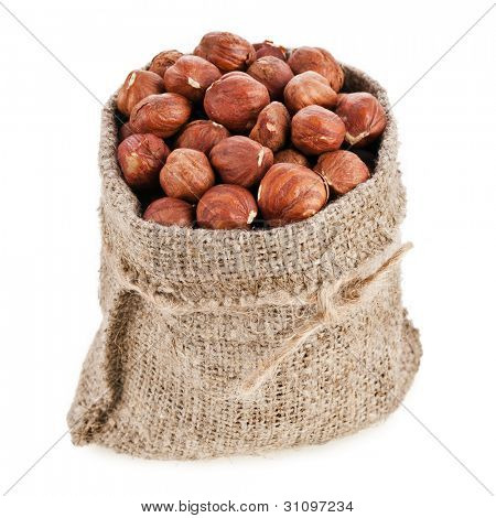Bag  sack wish Hazelnuts  Isolated on White Background
