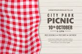 Picnic Horizontal Background. Vector Poster Or Banner Design Template With Realistic Red Gingham Tab poster