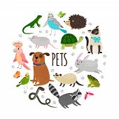 Popular Pets Round Banner Design. Vector Cartoon Animals Isolated On White Background. Illustration  poster