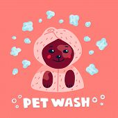 Pet Grooming Concept. Happy Lap-dog In A Towel And Bathrobe In Spa Salon. Dog Care, Grooming, Hygien poster