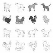 Isolated Object Of Breeding And Kitchen Icon. Set Of Breeding And Organic Stock Symbol For Web. poster