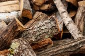 Split Dry Firewood Ready For Winter. Background Of Logs, Birch, Pine And Oak poster
