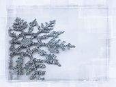 foto of winter trees  - blue tone snowflake with degraded edges - JPG