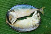 picture of chub  - Chub mackerel on a banana leaf . ** Note: Shallow depth of field - JPG