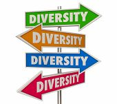 Diversity Inclusion Different Cultures Integration Signs 3d Illustration poster