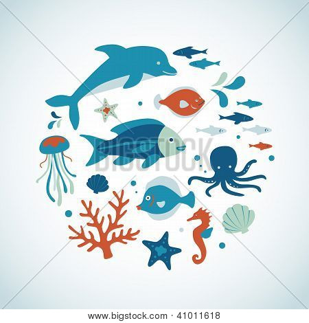 Sea Creature Collection