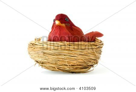 Old Bird Toy