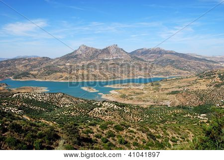 Olive groves and lake, Zahara de la Sierra, Andalusia.
