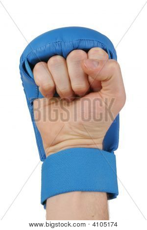 Fist With Karate Glove