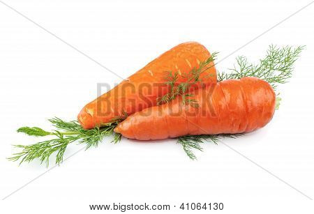 Carrots With Green Dill