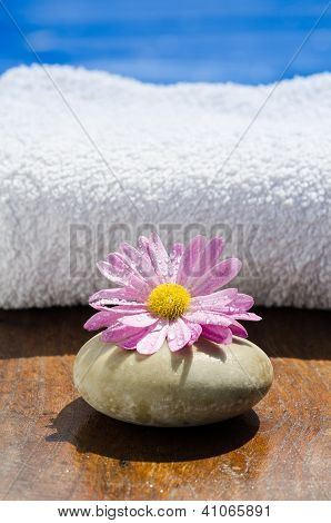 Wet Pink Spa Flower And Stone At Poolside