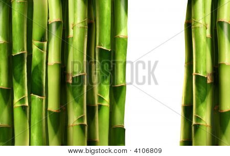 Bamboo Shoots Stacked On White
