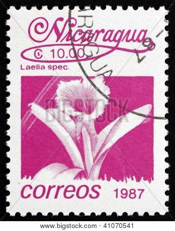 Postage stamp Nicaragua 1987 Mayflower Orchid, Flower