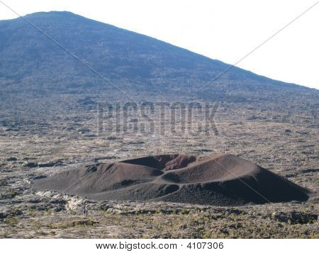 Formica Leo Volcano In Reunion Island
