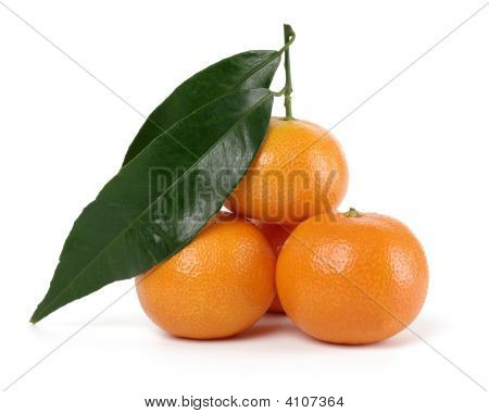 A Small Heap Of Mandarins