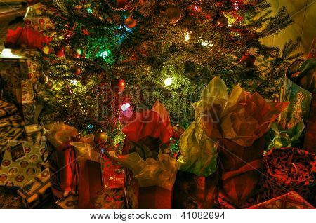Under the tree 27