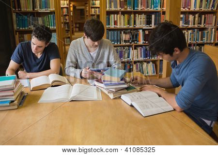 Students doing assignments in college library