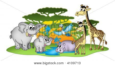 Group Of African Animals