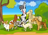 Purebred Dogs Group Cartoon Illustration poster