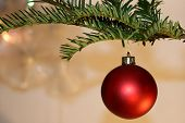 foto of ares  - ared Christmas Tree Decoration hanging from a branch - JPG
