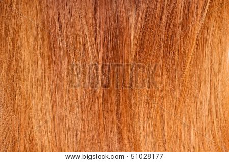Background of bright red natural hair