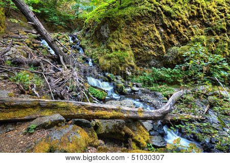 Starvation Creek Falls