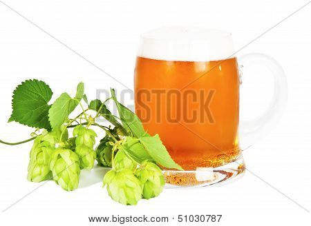 Glass Of Beer With Foam And Branch Of Green Hop