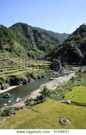 Rice Terraces Of The Northern Philippines