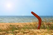 foto of aborigines  - Landscape with boomerang on overgrown sandy beach against blue sea and sky - JPG