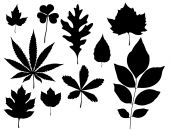 stock photo of marijuana leaf  - a set of 9 solid black isolated leaf graphics - JPG