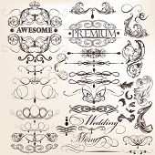 foto of swirly  - Vector set of calligraphic elements for design - JPG