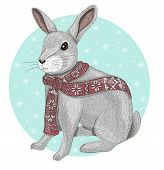 stock photo of wild-rabbit  - Cute rabbit with fair isle scarf winter background - JPG