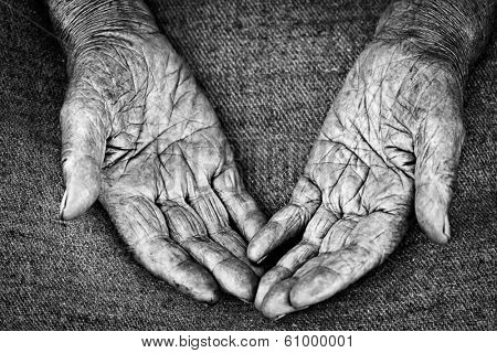 close-up shot of open palms of old woman, shallow DOF