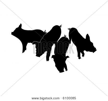 Siluetas de cerdos sobre fondo blanco