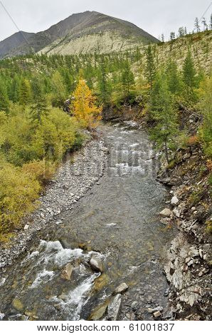 The River In Mountains Of Yakutia.