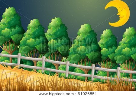 Illustration of a forest with a sleeping moon